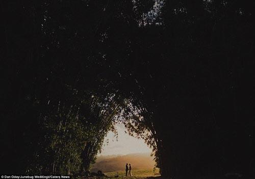 """""""Ngất ngây"""" với những bộ ảnh cưới đẹp đến xao lòng trên khắp thế giới - anh 3"""
