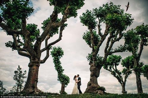 """""""Ngất ngây"""" với những bộ ảnh cưới đẹp đến xao lòng trên khắp thế giới - anh 7"""