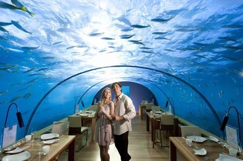 10 nhà hàng lạ lùng nhất trên thế giới - anh 2