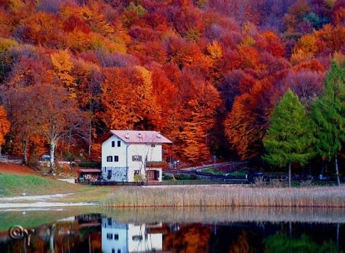 Cảnh sắc mùa thu đẹp ngỡ ngàng trên khắp thế giới - anh 1