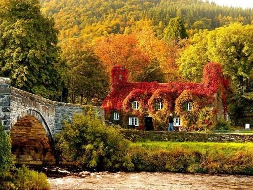 Cảnh sắc mùa thu đẹp ngỡ ngàng trên khắp thế giới - anh 10