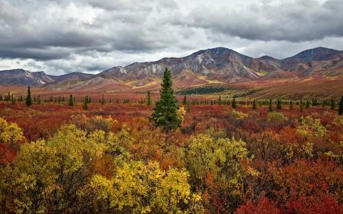 Cảnh sắc mùa thu đẹp ngỡ ngàng trên khắp thế giới - anh 14
