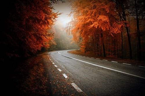 Cảnh sắc mùa thu đẹp ngỡ ngàng trên khắp thế giới - anh 4