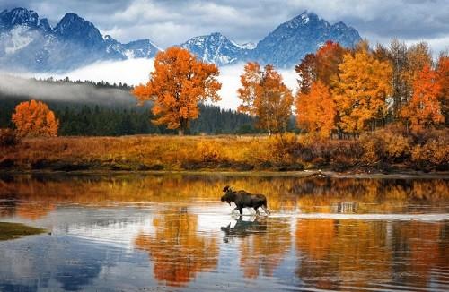 Cảnh sắc mùa thu đẹp ngỡ ngàng trên khắp thế giới - anh 6