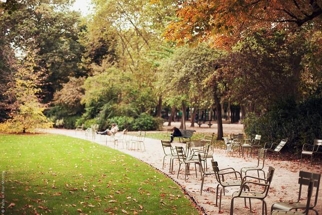 Ngắm cảnh mùa thu đẹp đến xao lòng ở Paris - anh 7