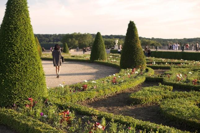 Ngắm cảnh mùa thu đẹp đến xao lòng ở Paris - anh 6