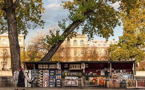 Ngắm cảnh mùa thu đẹp đến xao lòng ở Paris - anh 2