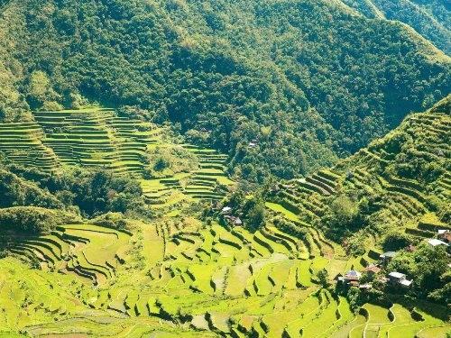 15 bức ảnh khiến bạn muốn tới Philippines ngay lập tức - anh 4