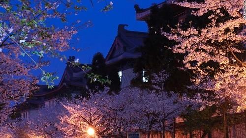 Ghé thăm Nam Kinh - Thành phố của các vị hoàng đế - anh 2