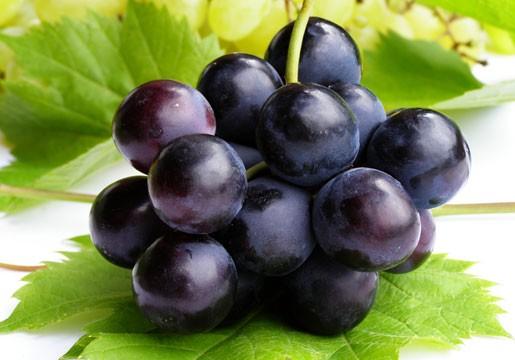 Mùa hè nóng nực nên ăn loại quả gì? - anh 6