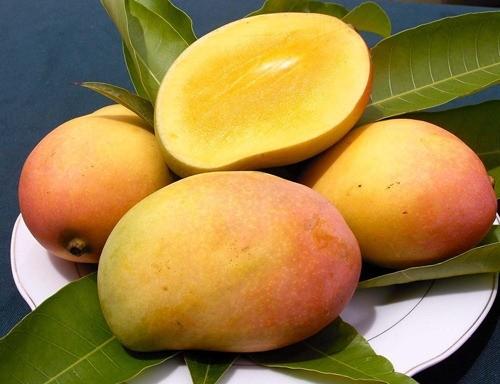Mùa hè nóng nực nên ăn loại quả gì? - anh 11