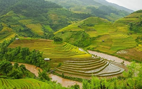 Việt Nam lọt Top 10 quốc gia hạnh phúc nhất thế giới - anh 5