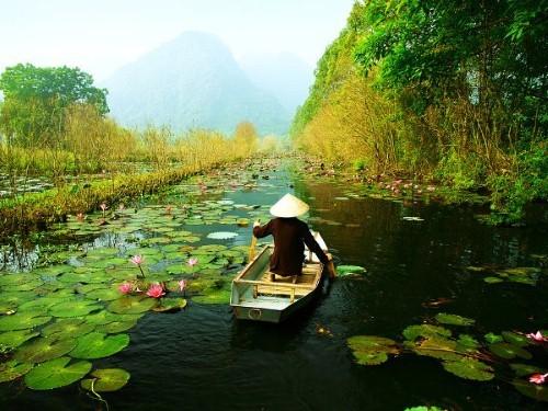 Điểm danh những lần lọt Top thế giới của Việt Nam năm 2015 (P1) - anh 1