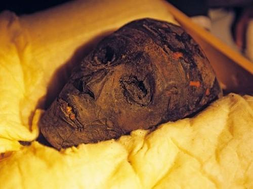 Giải mã lời nguyền chết chóc kinh hoàng của Pharaoh - anh 3