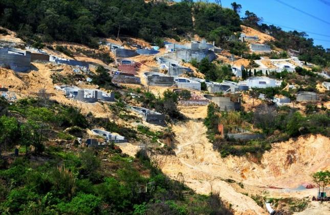 Trung Quốc: Phá rừng để xây mộ cho người... sống - anh 1
