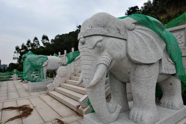 Trung Quốc: Phá rừng để xây mộ cho người... sống - anh 7