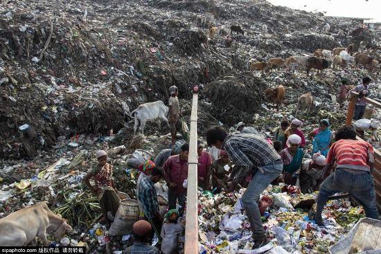 Trẻ em Ấn Độ mót rác sống qua ngày - anh 4