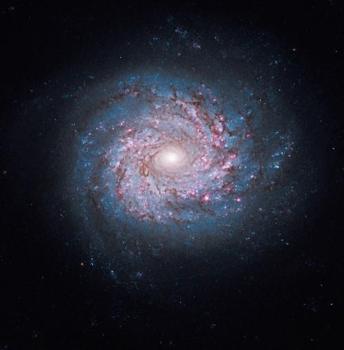 Những bức ảnh vũ trụ đẹp nhất do kính Hubble chụp được - anh 5