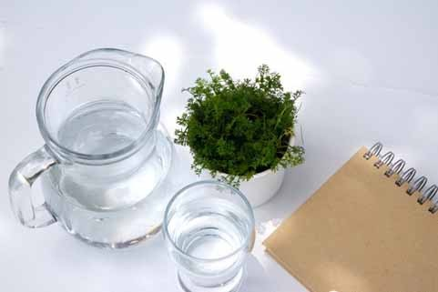 10 thói quen uống nước nguy hại đến sức khỏe - anh 7