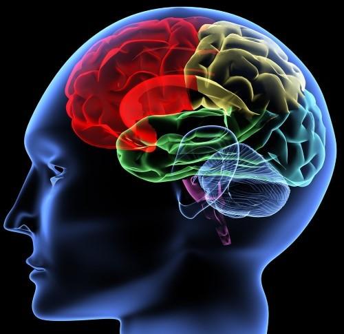 Trầm cảm hủy hoại não bộ như thế nào? - anh 1