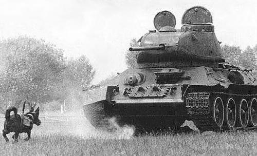 5 loại vũ khí kỳ dị nhất trong Thế chiến 2 - anh 2