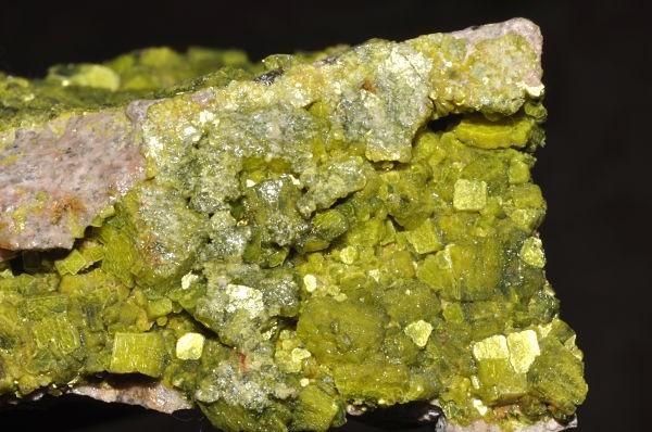 Điều gì xảy ra nếu bạn ăn Uranium? - anh 1