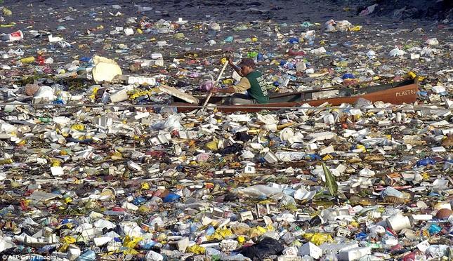 Con người đang hủy hoại đại dương khủng khiếp như thế nào? - anh 1