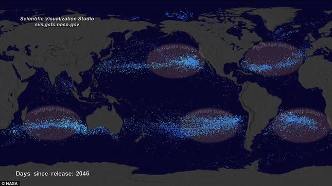 Con người đang hủy hoại đại dương khủng khiếp như thế nào? - anh 2
