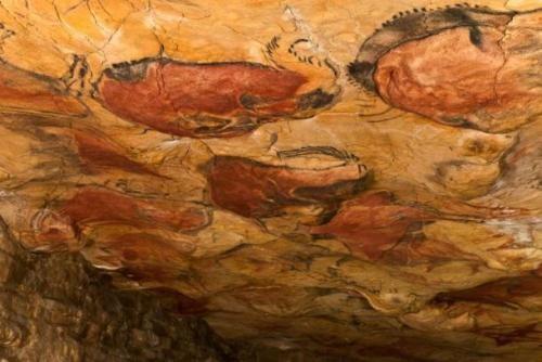 Phát hiện thú vị về loài người cách đây 32.000 năm trước - anh 3