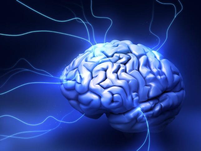 Bản chất của trí thông minh là gì? - anh 1