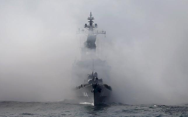 Fleet Review - Màn phô diễn sức mạnh hải quân đầy uy lực của Nhật Bản - anh 5