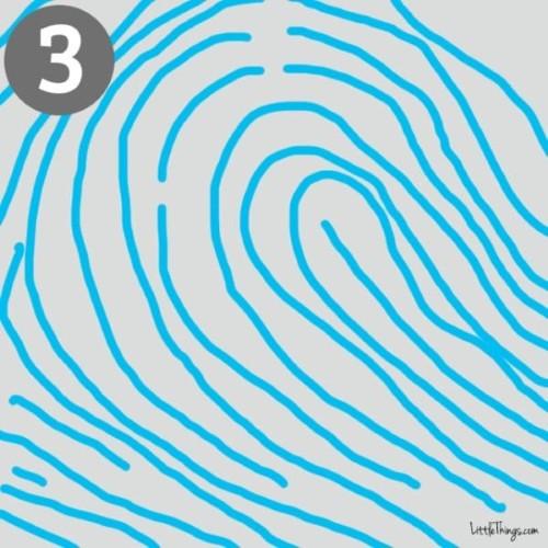 Giải mã bí ẩn dấu vân tay và tính cách con người - anh 3