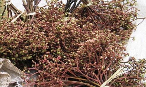 Sơn La – Nét quyến rũ đầy mê hoặc của miền Tây Bắc - anh 3