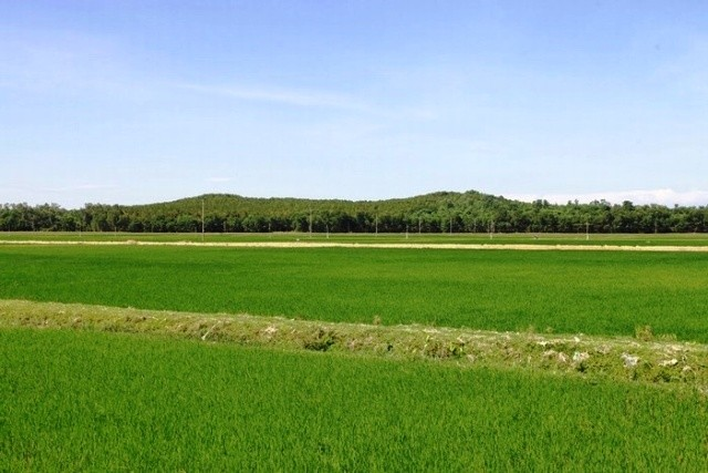 Tháng 5, hành hương về Nghệ An thăm quê Bác - anh 9