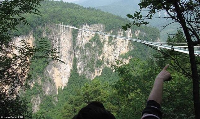 Ngắm cây cầu bằng kính cao nhất thế giới ở Trung Quốc - anh 3