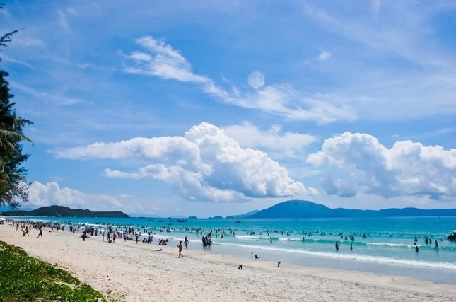 Đến Quảng Ninh ngắm vẻ đẹp biển Trà Cổ - anh 3