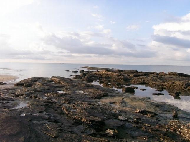 Đến Quảng Ninh ngắm vẻ đẹp biển Trà Cổ - anh 6
