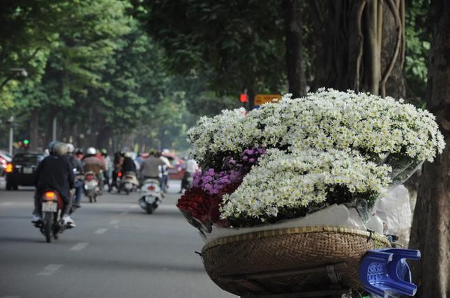 Đẹp rạng ngời Hà Nội 12 mùa hoa (phần 2) - anh 9