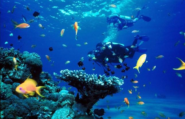 """Đến Hòn Tằm chiêm ngưỡng vẻ đẹp của """"đảo xanh"""" giữa Vịnh Nha Trang - anh 10"""