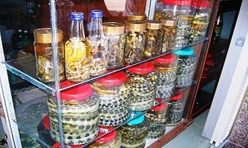 Những món ăn nổi tiếng ở quê hương Hồ Ngọc Hà - anh 2