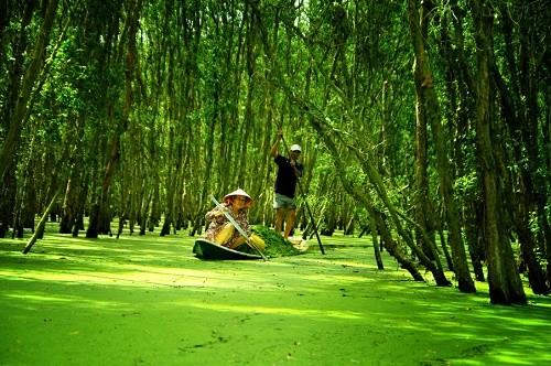 Những trải nghiệm tuyệt vời ở miền đất văn hóa Châu Đốc - anh 9
