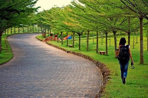 3 điểm đến tránh nóng lý tưởng ngày hè gần Sài Gòn - anh 14