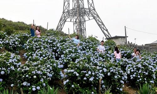 Những trải nghiệm tuyệt vời khó cưỡng lại trong mùa hè tại Mẫu Sơn - anh 8