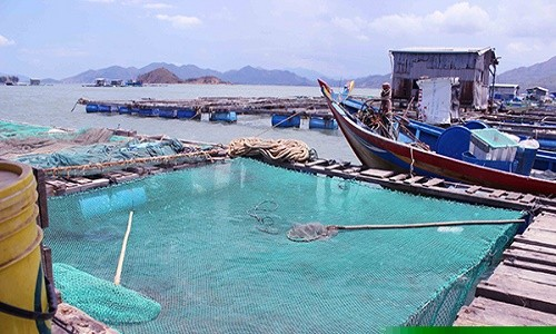 Đến đảo Bình Hưng chiêm ngưỡng vẻ đẹp biển đảo của tổ quốc - anh 3