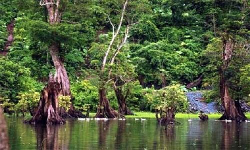 """Hồ Noong – chốn """"tiên cảnh"""" ở miền cao Hà Giang - anh 12"""
