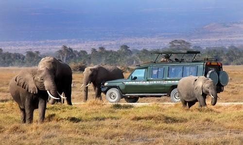 KENYA – Trải nghiệm tuyệt vời tại thiên đường động vật hoang dã - anh 2