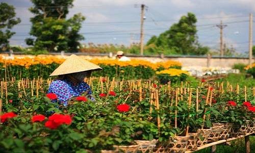 Sa Đéc - điểm thăm quan gần Sài Gòn mộc mạc mà hấp dẫn - anh 4