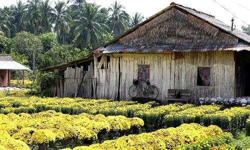 Sa Đéc - điểm thăm quan gần Sài Gòn mộc mạc mà hấp dẫn - anh 5