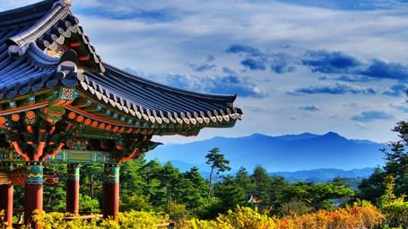 Cơ hội chiêm ngưỡng mùa thu vàng Hàn Quốc với nhiều ưu đãi hấp dẫn - anh 1