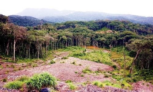 Vườn quốc gia Bidoup Núi Bà điểm đến mới mẻ dành cho giới trẻ - anh 5